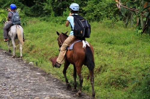 Costa Rica - Día 5 (361)