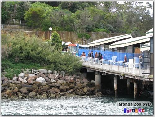 Taronga Zoo Ferry Wharf SYD