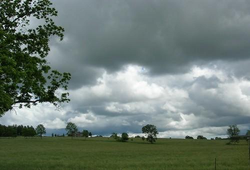 weather 003