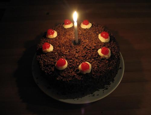 the portal cake