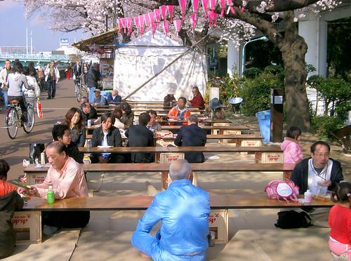 Gente bajo los cerezos en flor