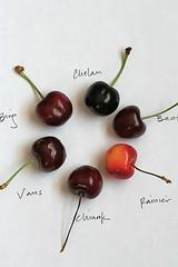 cherries to taste