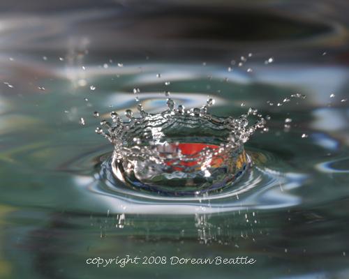 Splash! 4