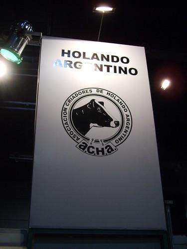 Holando Argentino Melkkoe ras