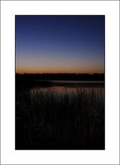 Banner Marsh Sunset 2