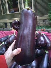 i'm a little eggplant?