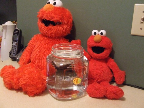 elmos and dorothy