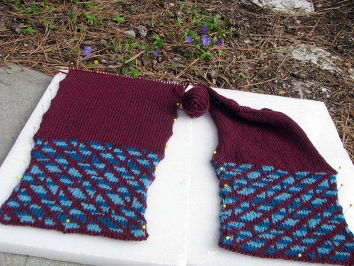 Estela Cardigan Test Knit Sleeves Ready for Cap Shaping