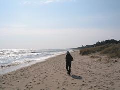 The beach on the Baltic coast