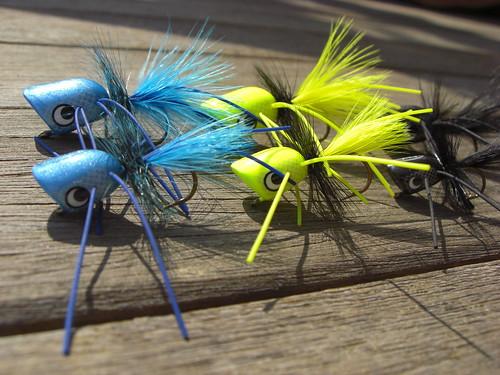 Boogle Bugs