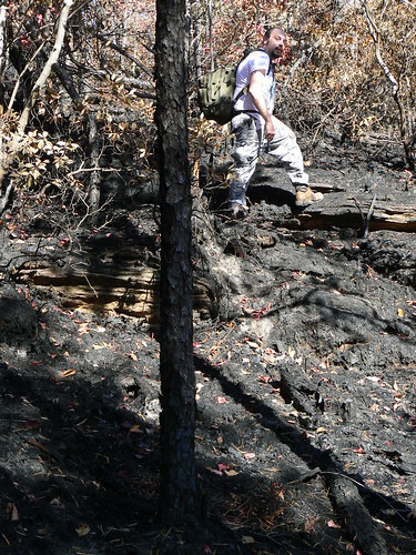 Sinking Creek Mountain - Ascent - Forest Fire - James Hike Debris