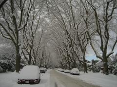 West Broadway, snowed under