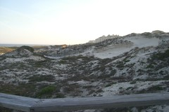 Sand Dunes at the American Beach in Florida
