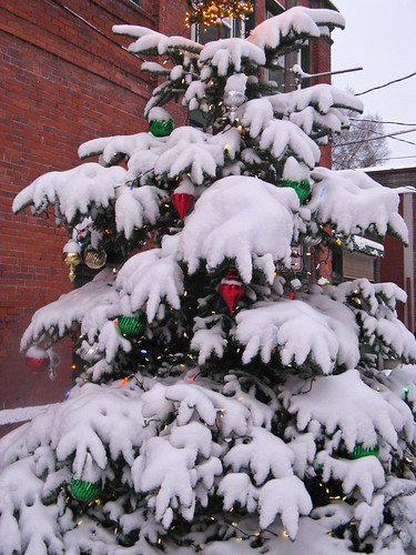 Pine Square Christmas tree