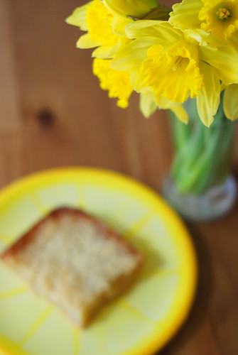 daffodils and a snack