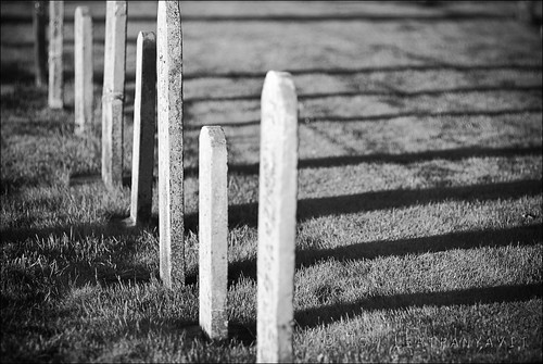 Long shadows from headstones