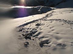 La nieve brilla con millones de destellos