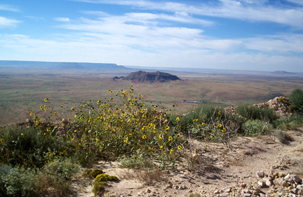 Near the peak of Tucumcari Mountain, looking south.