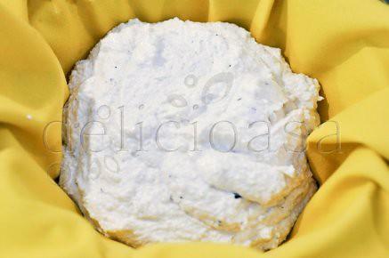 branzica de caju (2 of 9)