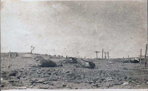1914-1918 (11)