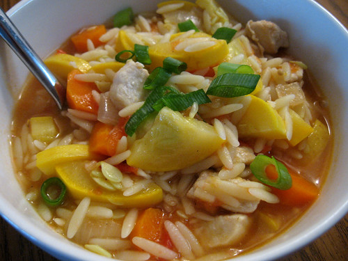 Squash and Chicken Orzo Stew