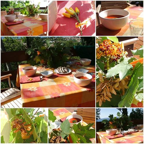 autumn red and orange 1