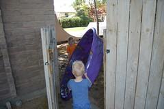 Navigating the Gate