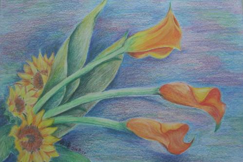 淑瓊_色鉛太陽花與海芋
