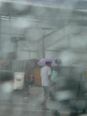 typhoon frank_man in umbrella