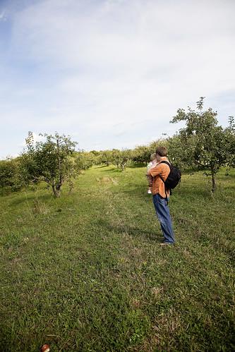 MN Harvest 2 090608