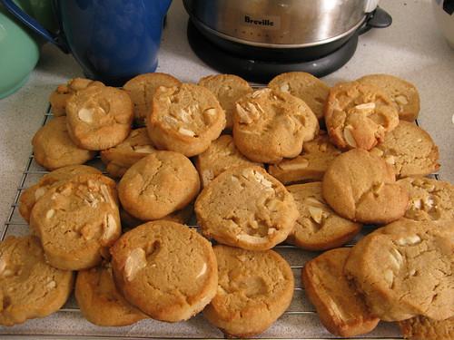 vegan white chocolate & macadamia cookies