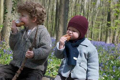 Picknick in het Hallerbos