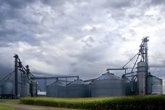 Tremont Grain Co-Op Raining