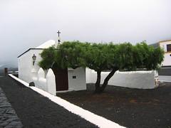 Lanzarote, zona vinicola de La Geria