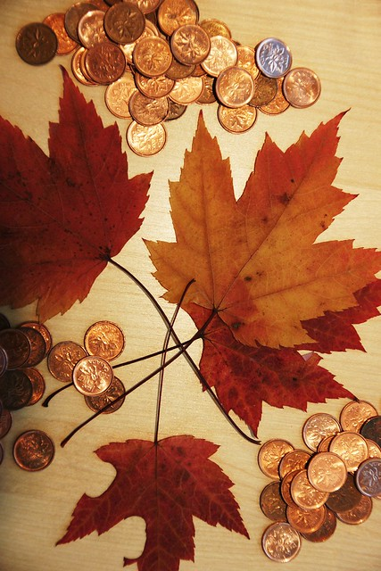 raw coins & leaves... (part 2)