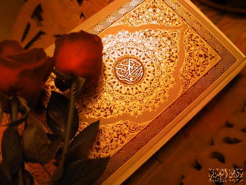 القرآن الكريم by علاء الدين ابو طه.