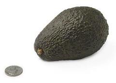 16-avocado