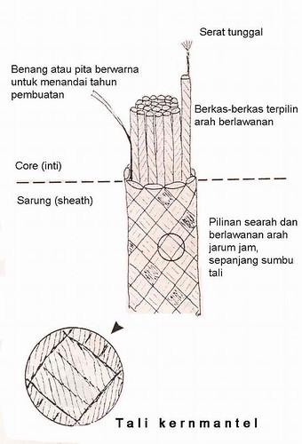 Struktur Tali
