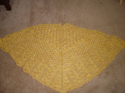 bee shawl finito 6-3-2008 1-25-40 AM