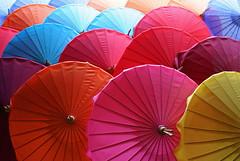 Umbrellas 05