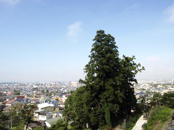 飯盛山からの景色1