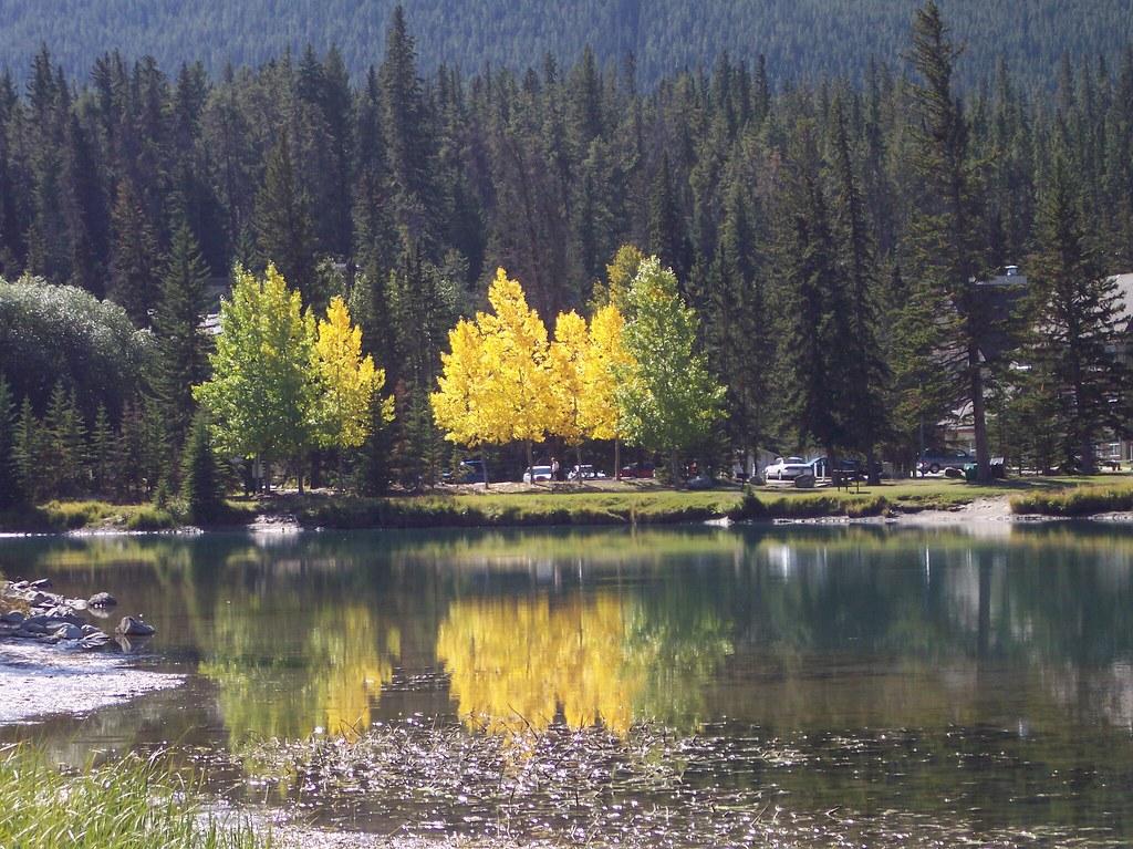 Indian Summer 2008, Rocky Mountains, Alberta, Canada
