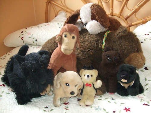 Teddies Galore!