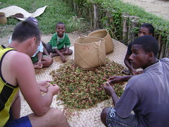 Working on cloves in the village... Check out the little guys smile in the back.