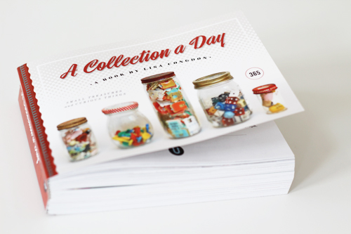 A Collection a Day: Book by Lisa Congdon