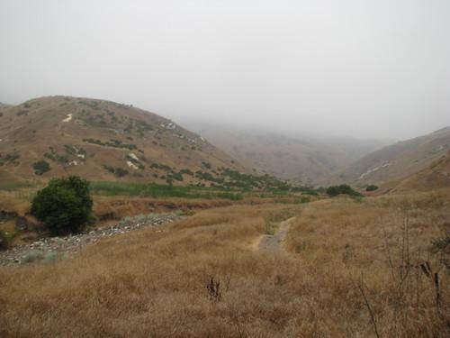 Santa Cruz 12