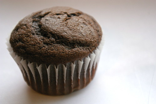 Solo chocolate cupcake
