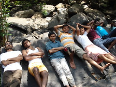 Sharavathy Valley 173