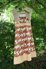 Wild Dress 002