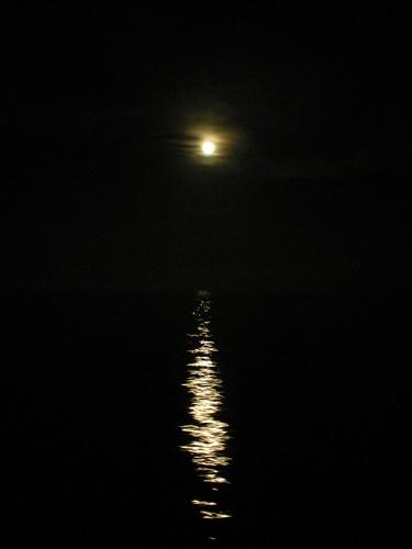 Moonlignt